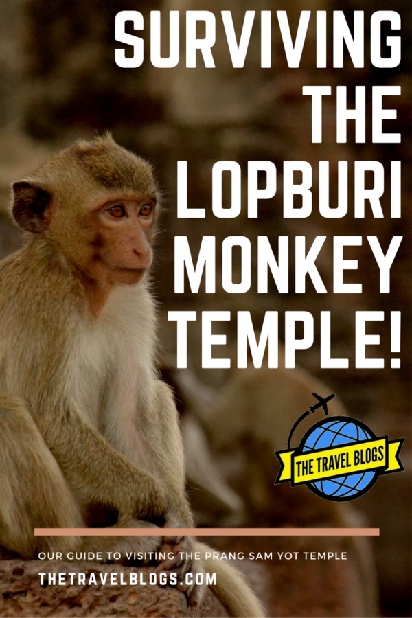 Great tips for visiting the monkey temple in Lopburi, Thailand.