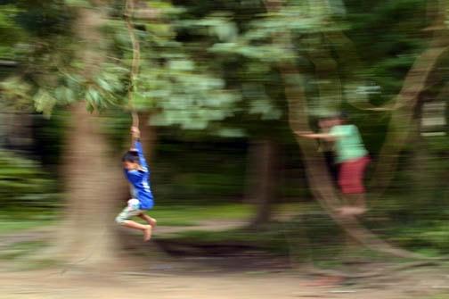 Swinging through Angkor Wat