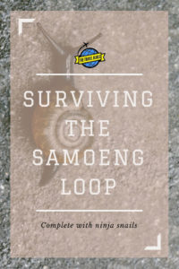 Check out what I found out about the Samoeng Loop