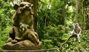 Visiting the Monkey forest and rice fields of Ubud
