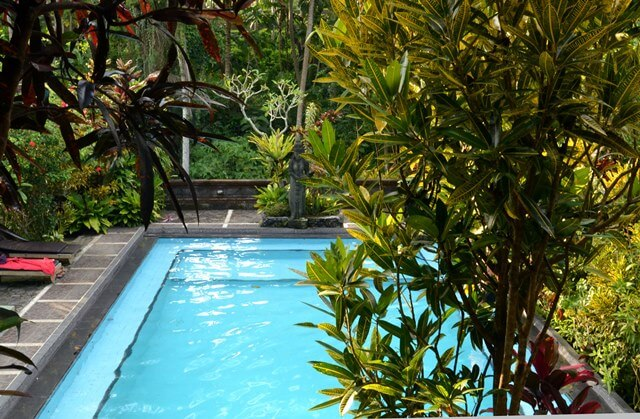 Finding cheap accommodation in Ubud