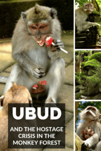 The hostage crisis in Ubud Monkey Forest