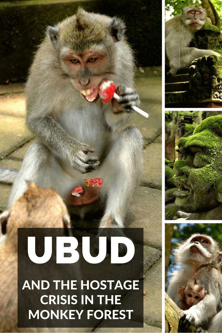 The hostage crisis in Ubud Monkey Forest