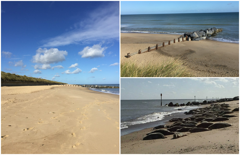 Visiting Horsey Beach Norfolk