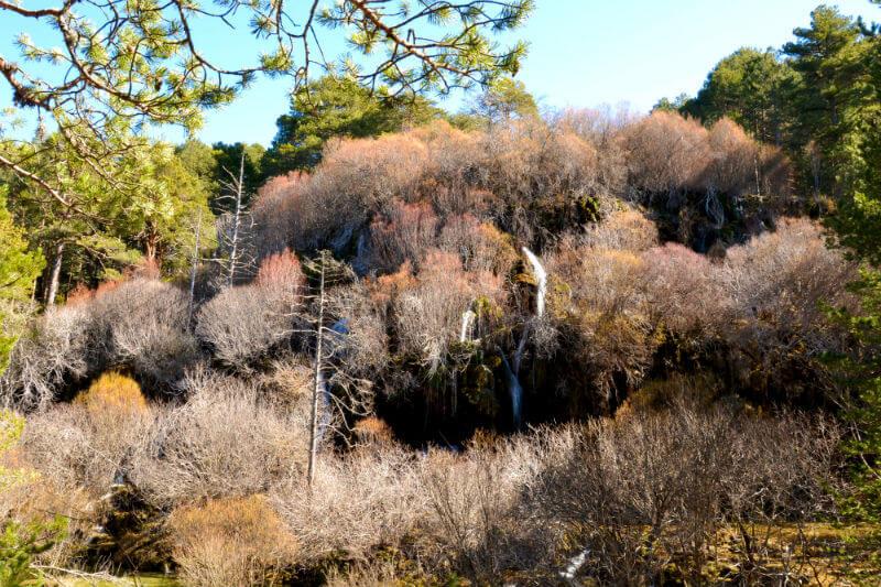 Waterfall, Nacimiento Del Rio Cuervo
