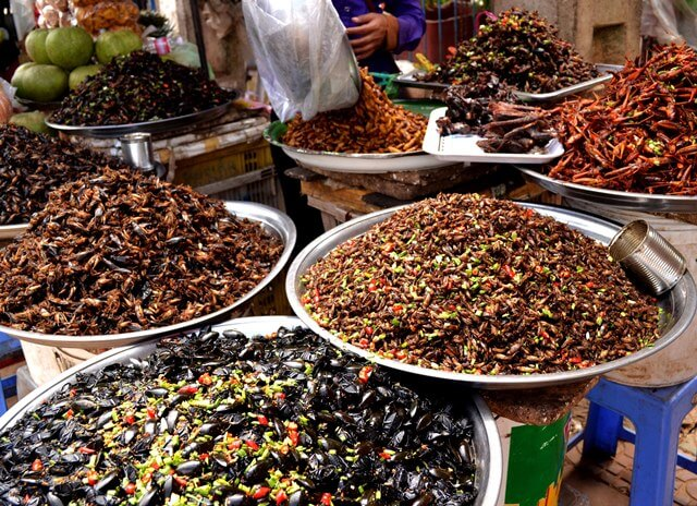 Eating bugs and more in Asia