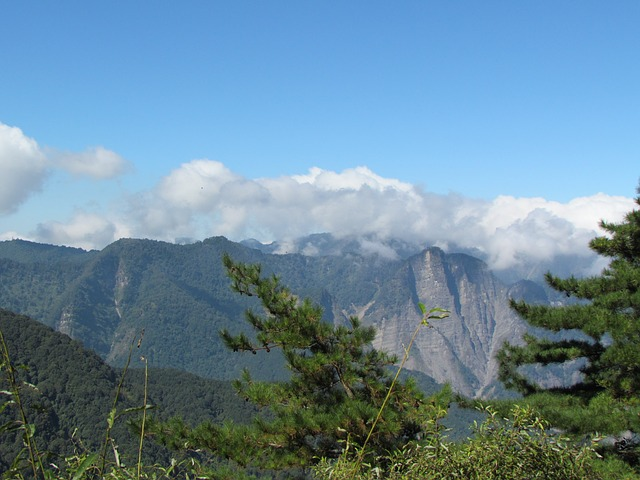 Visiting Taiwan and Alishan National Park