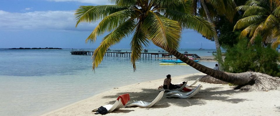 Top 5 Things to Do on Moorea