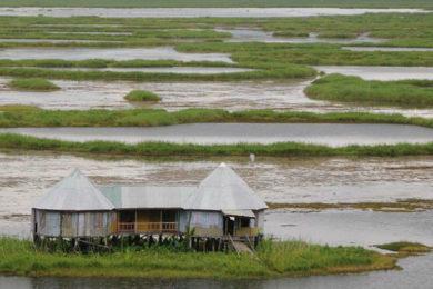 Keibul Lamjao, a floating National Park