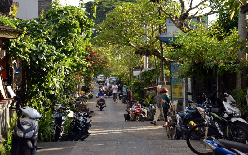 The Streets of Ubud