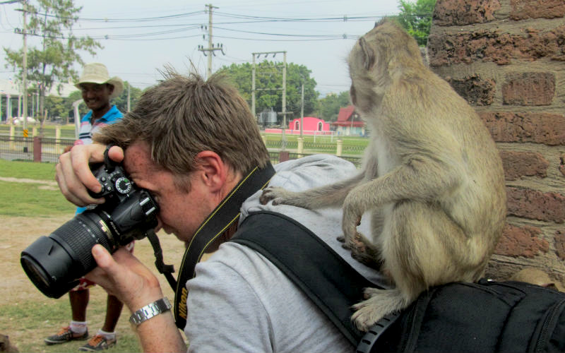 Getting groomed by a monkey