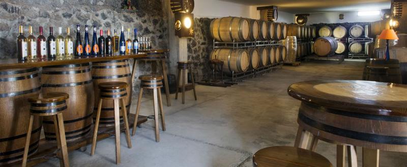 Bodegas Vega de Yuco Vineyard Lanzarote
