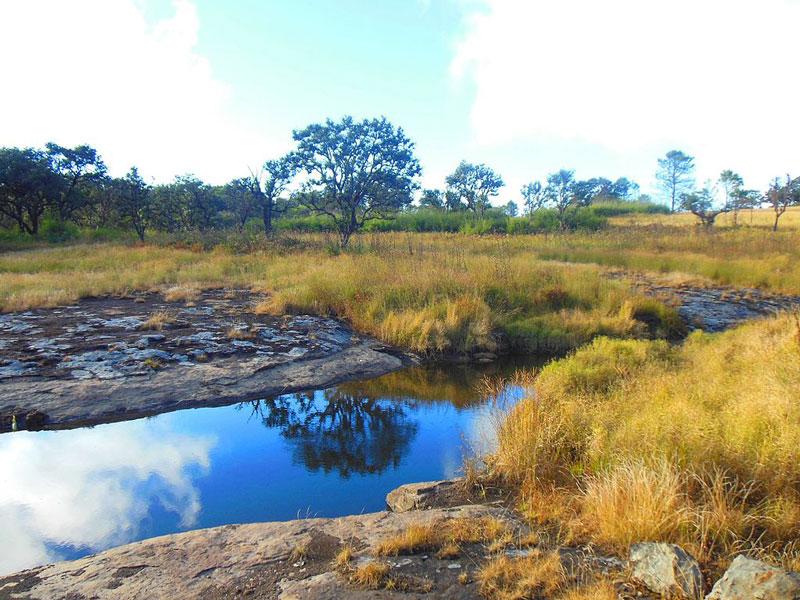 visiting-phawngpui-national-park