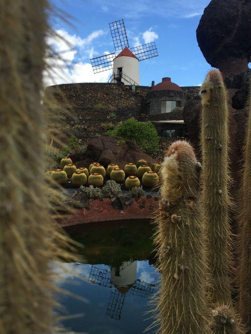 The Cactus Garden in Lanzarote