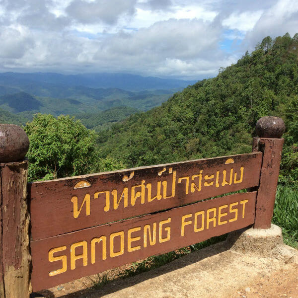 View from the Samoeng Forest Viewpoint