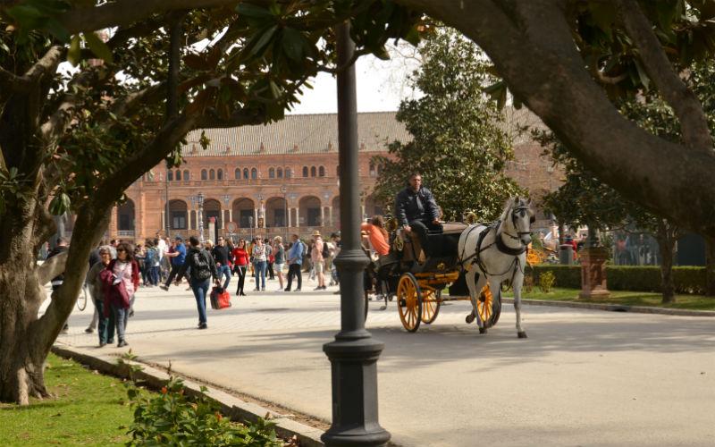 Horse ride in Seville