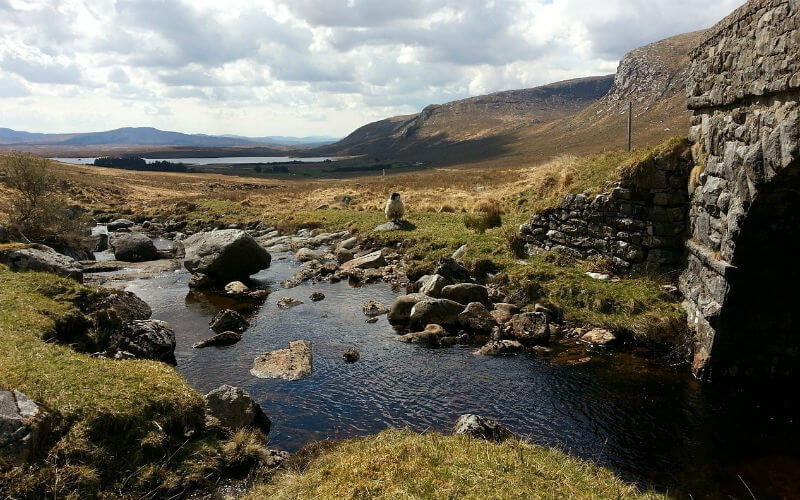 What to do in Donegal