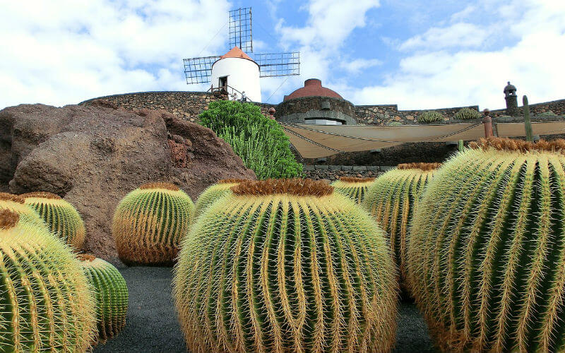 Visiting the Cactus Garden in Lanzarote
