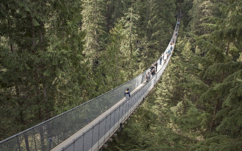 Capilano Suspension Bridge - one of the Must-Visit Places in British Columbia