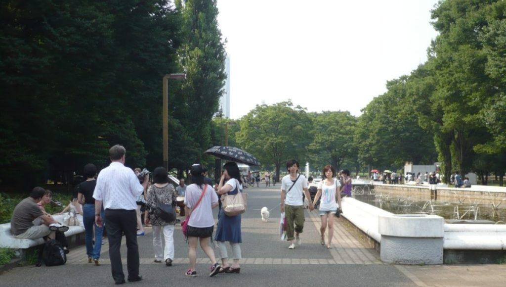 Yoygi Park part of my 5-day Tokyo Itinerary