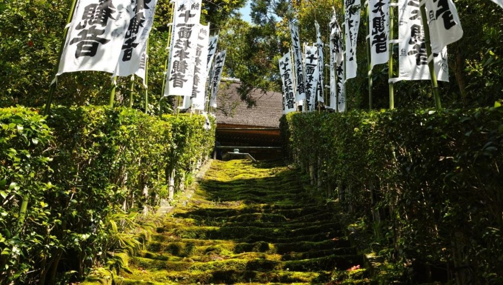 The Moss covered stairs of Sugimoto Dera