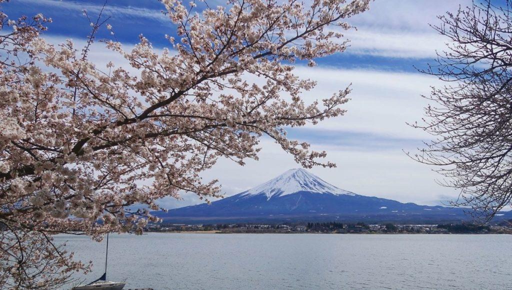 A view of Kawaguchiko and mt Fuji