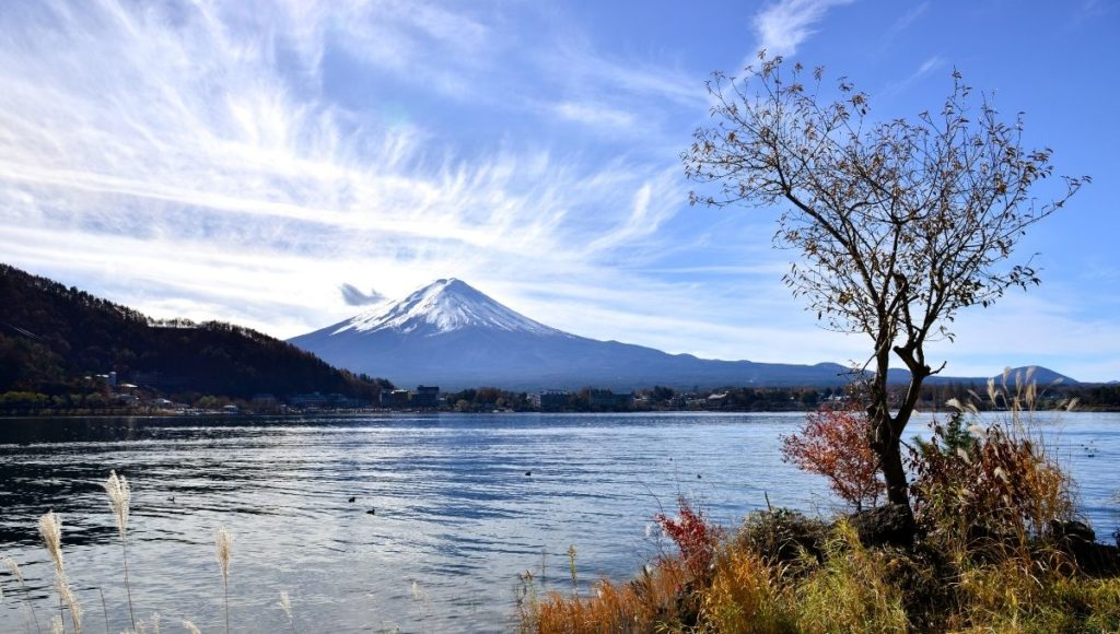 A lovely view of Mt Fuji from Kawaguchiko