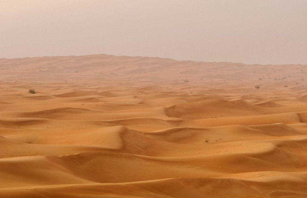 The middle East desert